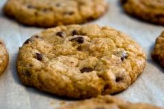 Chocoalate Chip Cookies
